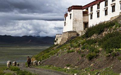 Justice For Tibetan Nomads