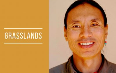 Grasslands: Songs and stories from Tibet