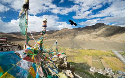 Yeshi's story: protest and punishment in Tibet