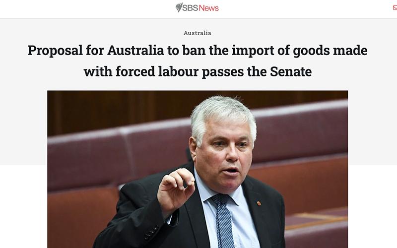 Senate passes forced labour amendment