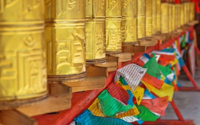 Dedicate your birthday to Tibet